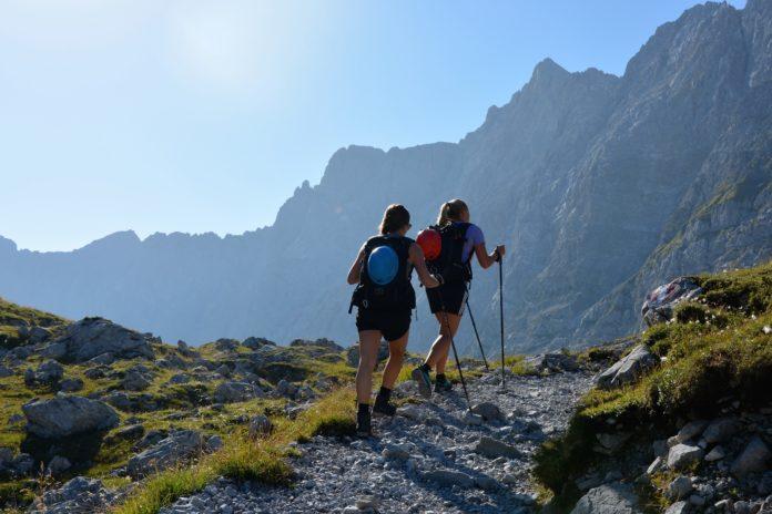 Tirols Tourismusverbände, Mogasi