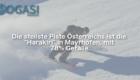 Harakiri, Mayrhofen, Mogasi, Mogasifakten, Ski, Fakten
