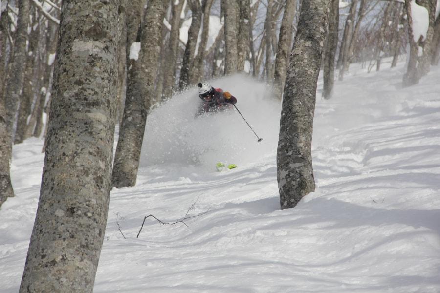 Ein Grund, Skilehrer zu werden, Mogasi