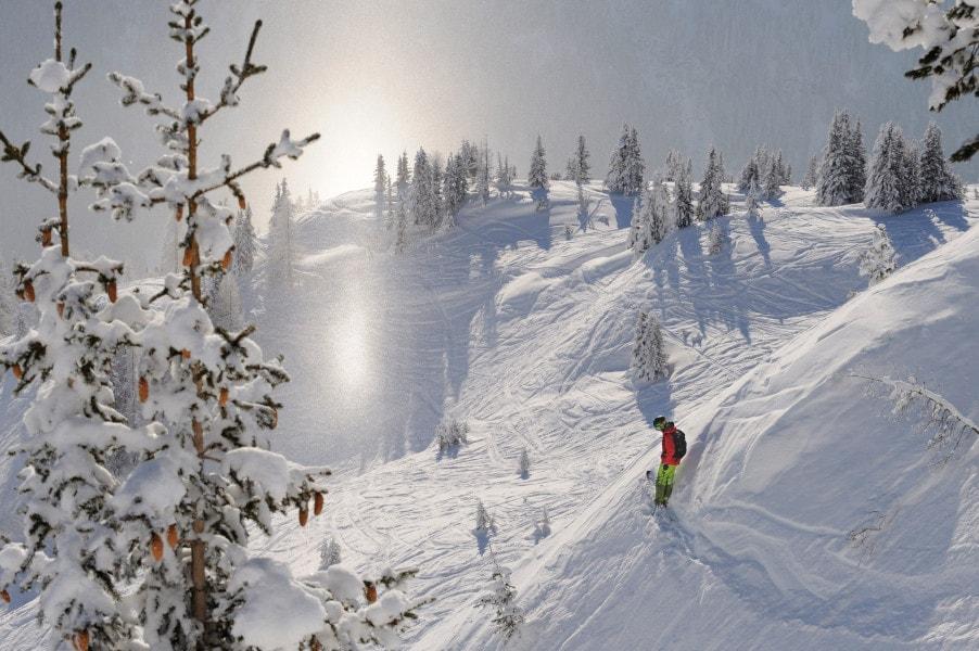 Welches Skigebiet? Bauchgefühl, Mogasi
