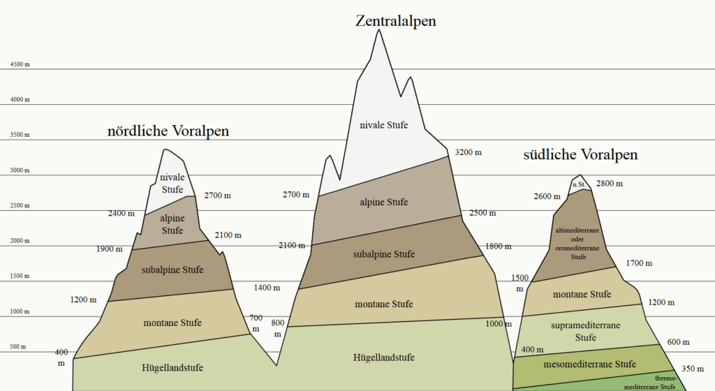 Höhenlage, mittlere Lage, Mogasi