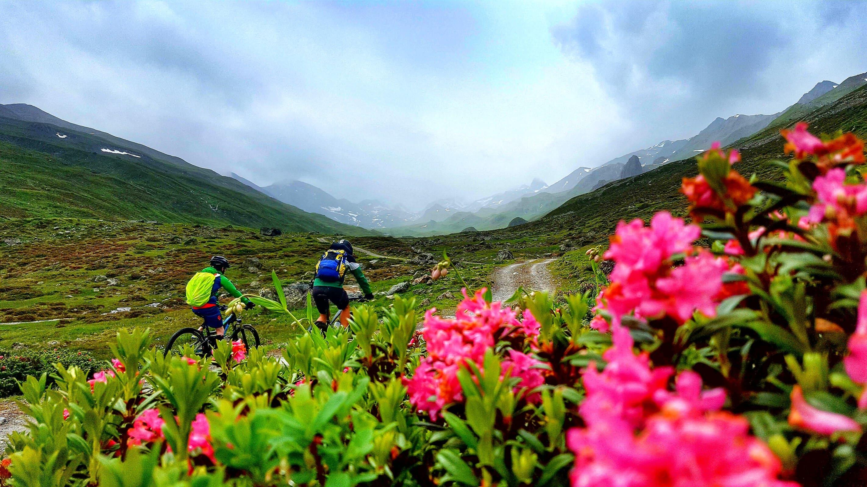 Mountain biking in Tirol